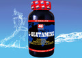 wholesale bodybuilding supplements l glutamine