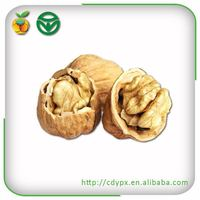 organic chandler wholesale walnuts in shell for sale