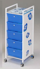 Floral Pattern Drawers with Iron Bathroom Trolley