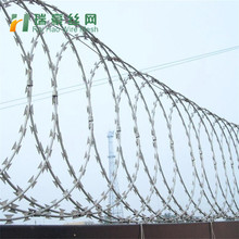 Razor barbed wire fence/ barbed wire frame