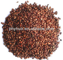Factory Supply Grape Seed Extract 95% 98%