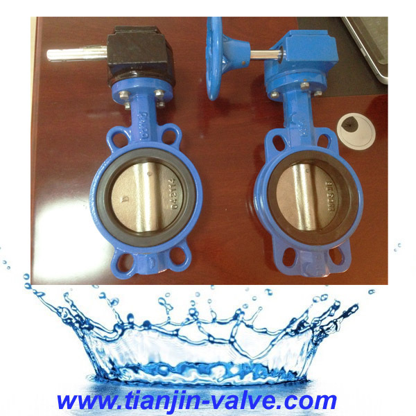 shouldered type butterfly valve