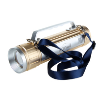 Super LED Bright Light Rechargeable Torch Flashlight