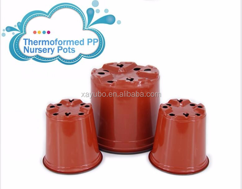 wholesale PP plastic vegetable flower seedlings nursery/plant pots on sales