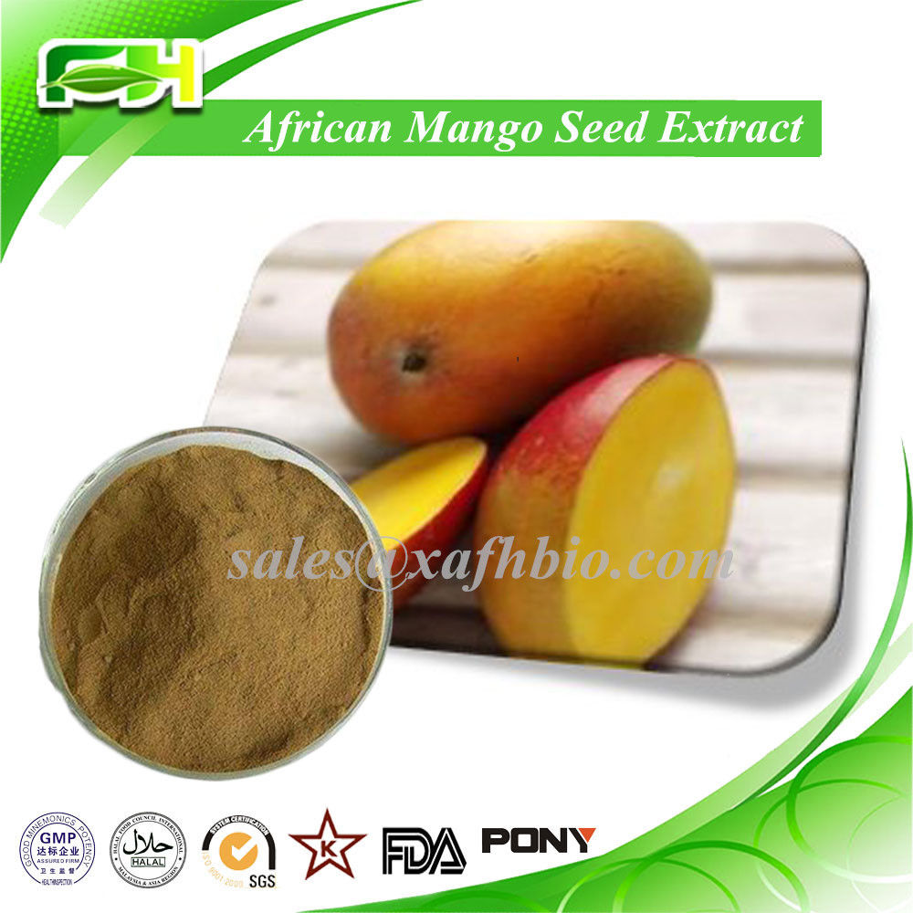 Natural Weight Loss African Mango Seed Extract