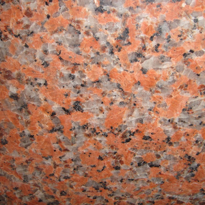Wholesale Polished Chinese 100% Natural G562 24x24 Maple Red Granite Floor Tile For Sale
