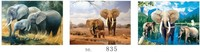 Top quality lenticular wall art 3d elephant flip picture