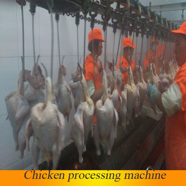 portable automatic chicken slaughter houses for slaughtering