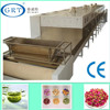 Factory direct sales Apricot kernel tunnel microwave drying machine