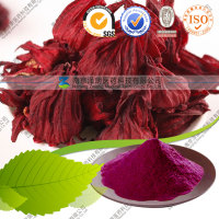11 Year Factory Supply Dried Rosella Powder Roselle Powder