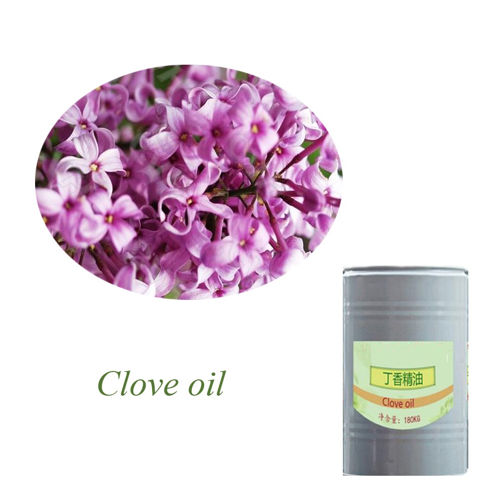 Best price pure natural organic clove flower essential oil
