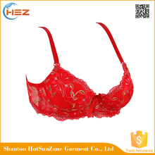 HSZ-58118 Sexy Fashion Young Girl Plus Size Embroidery Bra Model Best Quality Ladies Bra Lingerie