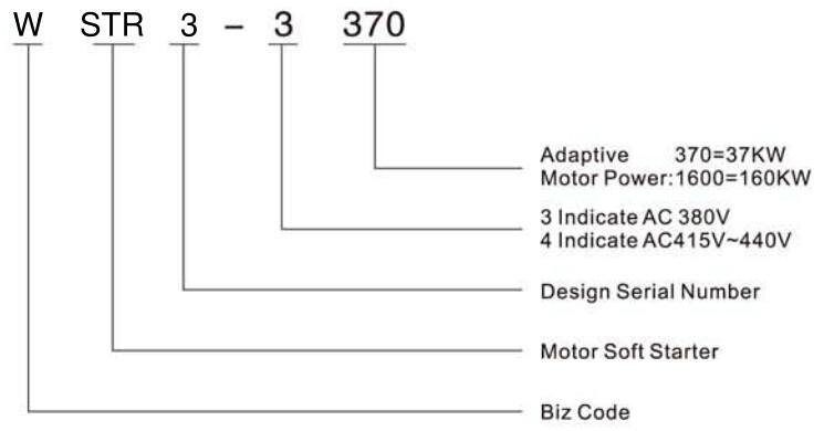 WSTRD model.jpg