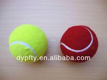 eco tennis ball pet grooming