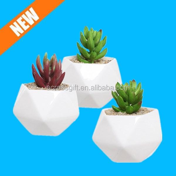 conjunto de cermica blanca diseo geomtrico plantas planta de interior titulares buy product on alibabacom