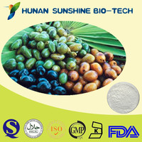 TOP Quality Saw Palmetto Extract Powder 25%/30%/45% Fatty Acid