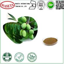 Olive Leaf Extract,high quality,HPLC