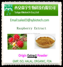 100% Natural Raspberry Extract 5:1 10:1 20:1