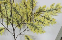 2014 SJ TL34 Factory price fake yellow oak leaf for landscape park autumn tree leaves decor artificial tree branches oak leaves
