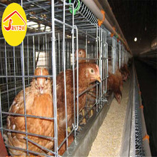20 Years supplier automatic poultry equipment battery chicken cages laying hens for sale