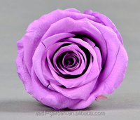 Grade A long lasting saving real roses wholesale preserved rose flower from Yunnan