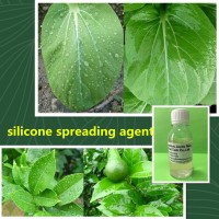 nontoxic silicone oil surfactant for lowering the surface tension of spray solutions as Silwet L-77