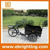 new baskified electric tricycle adult with pedal assist