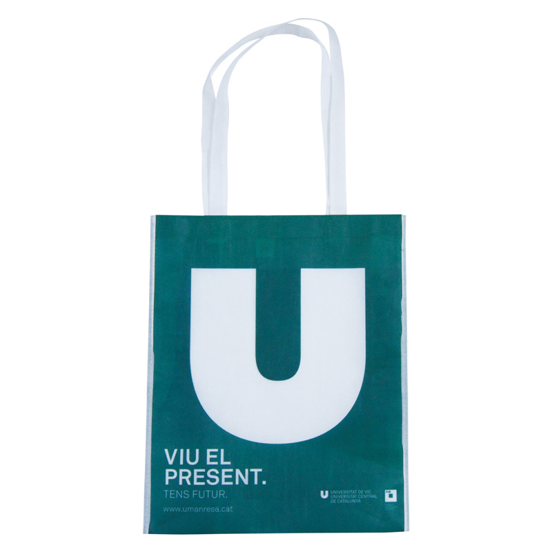 Customized Logo Printing Gift Eco Friendly Reusable Non Woven Shopping Bags