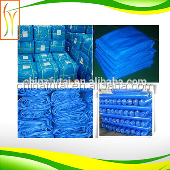Promotion 100% Virgin HDPE Tarpaulin for Tent Camping Tarp PE Tarp for Car Ground Covering
