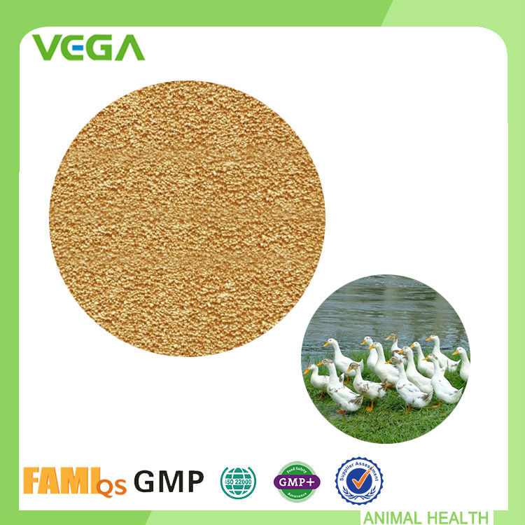 GMP Capsule Feed Grade For Animals Poultry Feed Premixes
