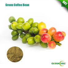 Natural Chlorogenic Acid From Green Coffe Bean
