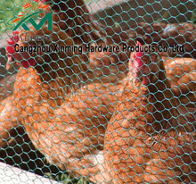 Hexagonal chicken wire mesh fence / lowes chicken wire mesh roll / chicken coop hexagonal wire mesh
