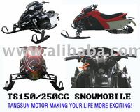 TS250-A snow mobile