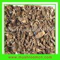 2012 crop Wild Morchella Conica