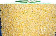 Garde A quality frozen IQF whole kernel sweet corn