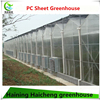Plastic Sheet Green House For Agriculture