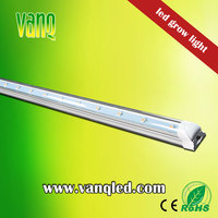 VANQ grow led light 20w for indoor hydroponic led grow tube for potato data palm tissue culture