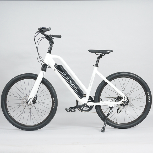 Electric mountain bike full suspension