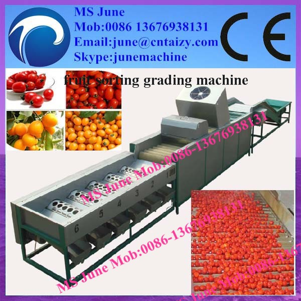 Round fruit and vegetable sorting/grading machine/packing fruit sorter machine 0086 13676938131
