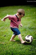 Futsal Sports Court Aritificial Grass Turf (AST-60D)