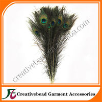 Hot sell new products for 2014 wholesale Wedding Decorative Natural Peacock feather large Peacock feather with eye