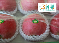 Supply different calibers good taste fuji apple to Middle east