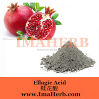 Best Price pomegranate juice powder for soft drinks