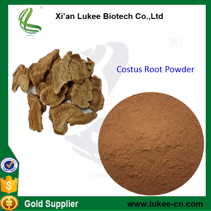 Costus Root Extract powder Radix Inulae/costus root p.e.