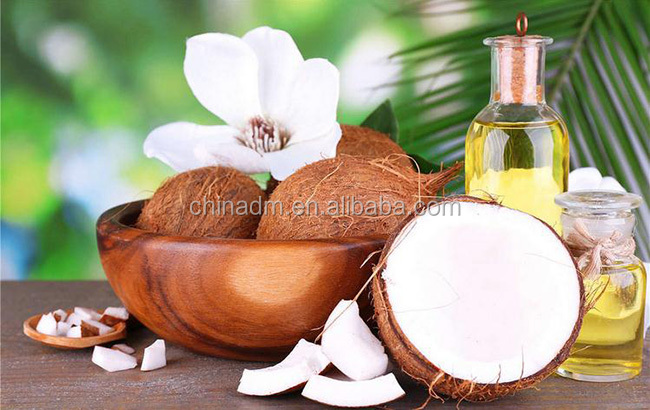 free sample available organic Coconut cream Powder bulk price