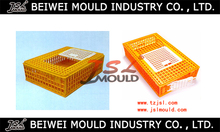 High Quality Customized Plastic Chicken Cage With Two Doors Mould Hencoop Mould