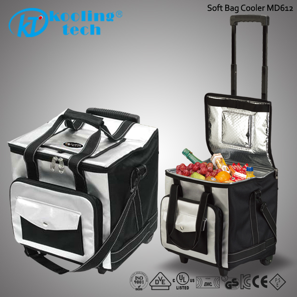 Electric Cooler Bag Small Rotomolded Cooler Box with Wheels