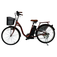 2 Wheel High Quality Italian Electric Bike