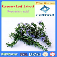 Natural Rosemary Extract Rosmarinic acid / Herb Extract / Water Soluble Food Grade Rosemary Extract Rosmarinic Acid
