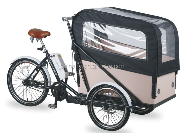 electric assist cargo trike